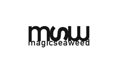 Magic Seaweed Logo